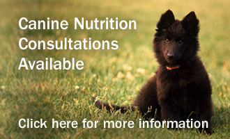 Canine Nutrition Consultations